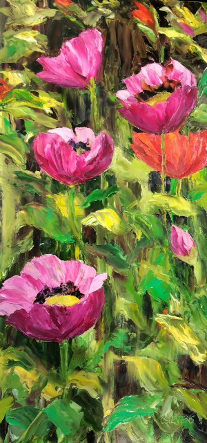 "Cindy Steven's ""Poppies in the Sunshine"""
