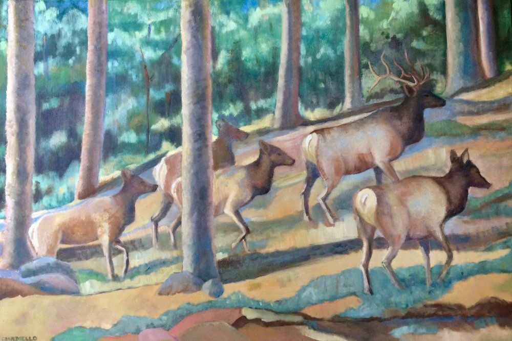 Elk Trek
