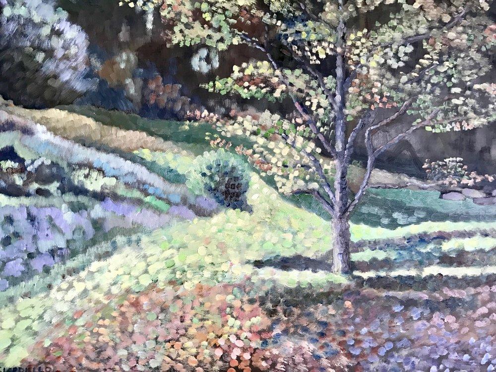 """Cathy Ciardiello's """"Claudia's Yard"""""""