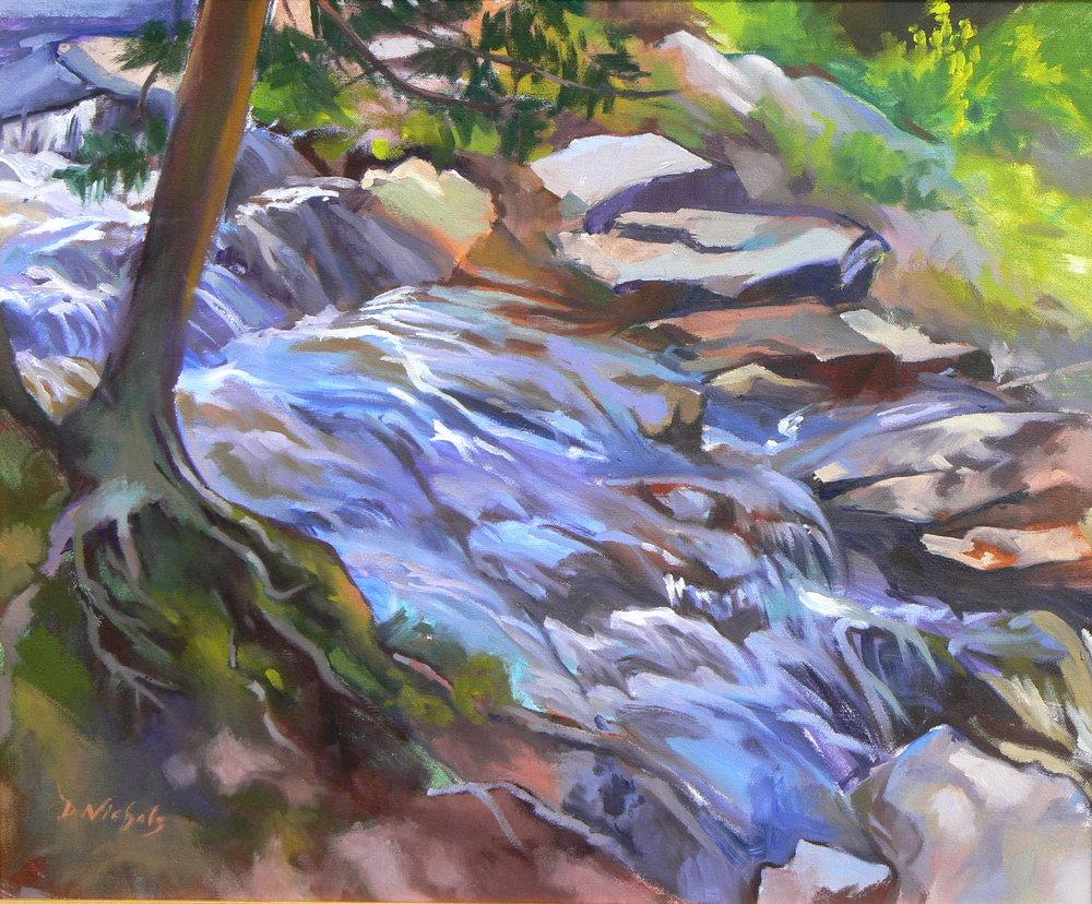 "Dan Nichols ""Valley Falls"""