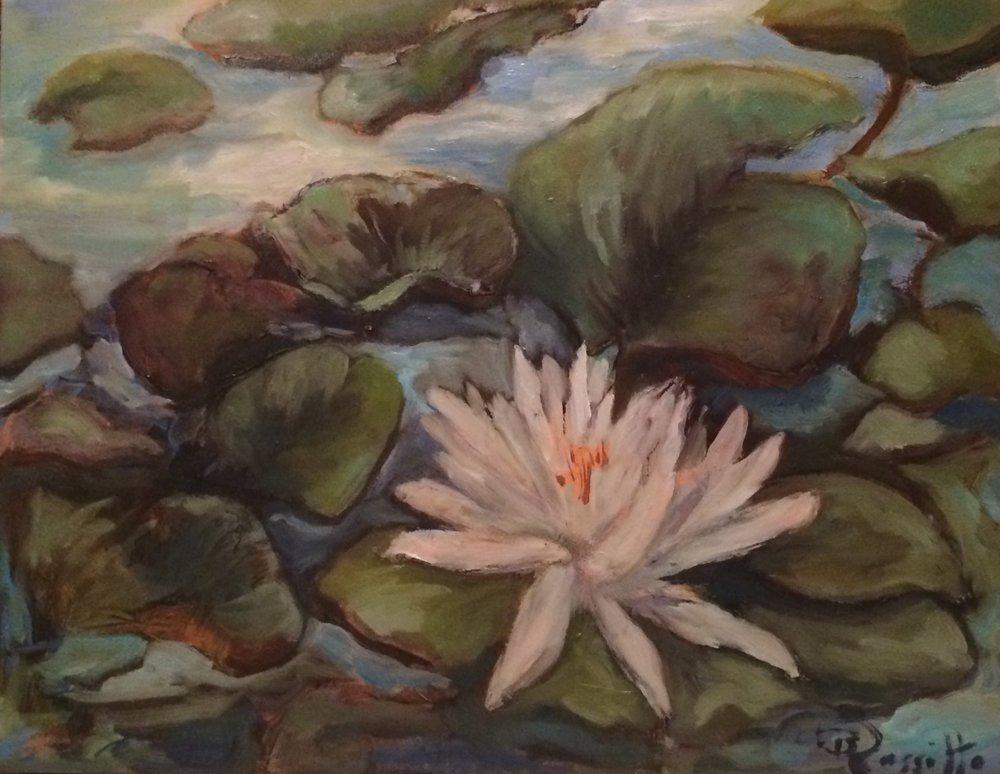"""Barbara Rossitto's """"White Water Lily"""""""