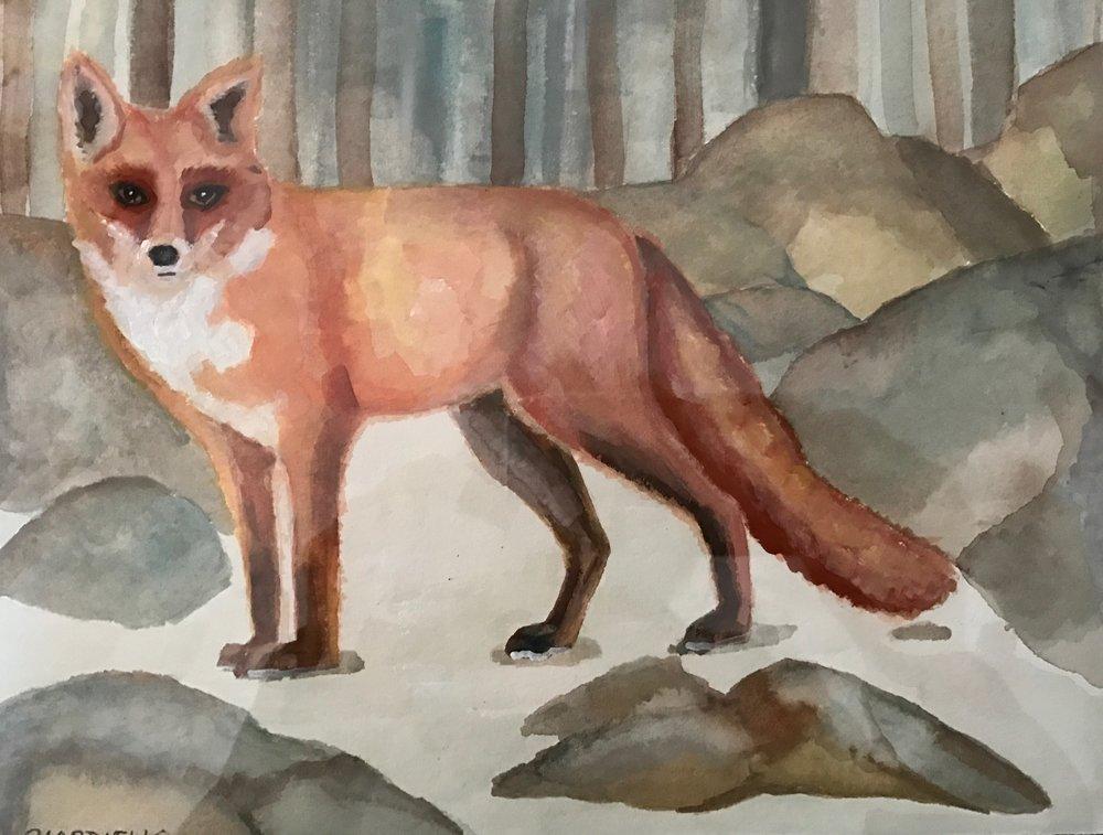 """Cathy Ciardiello's """"Red Fox"""""""