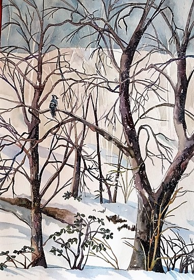 "Claudia Van Nes's ""Jay on a Branch"""