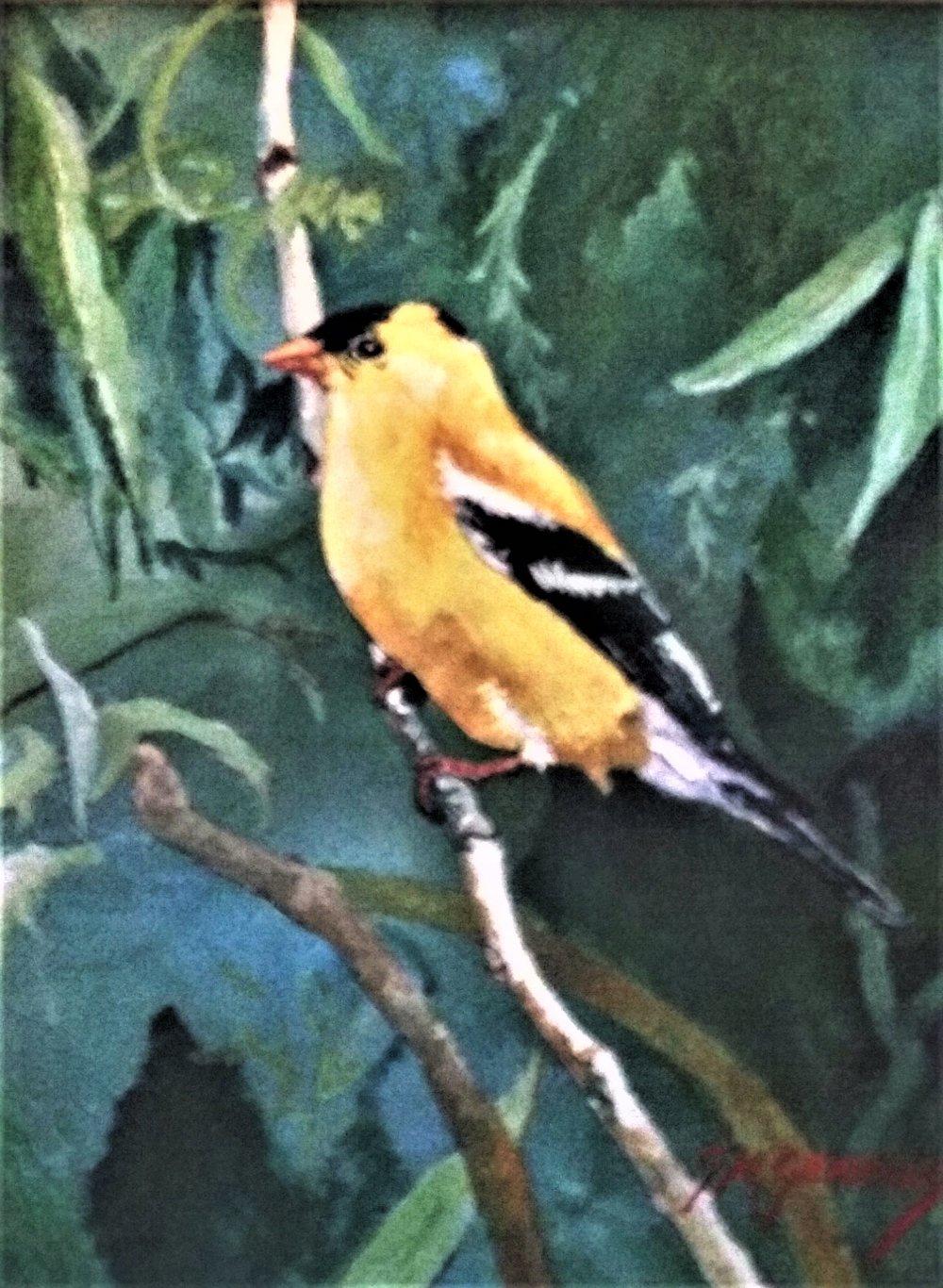 """Gigi Genovese's """"Gold Finch"""""""
