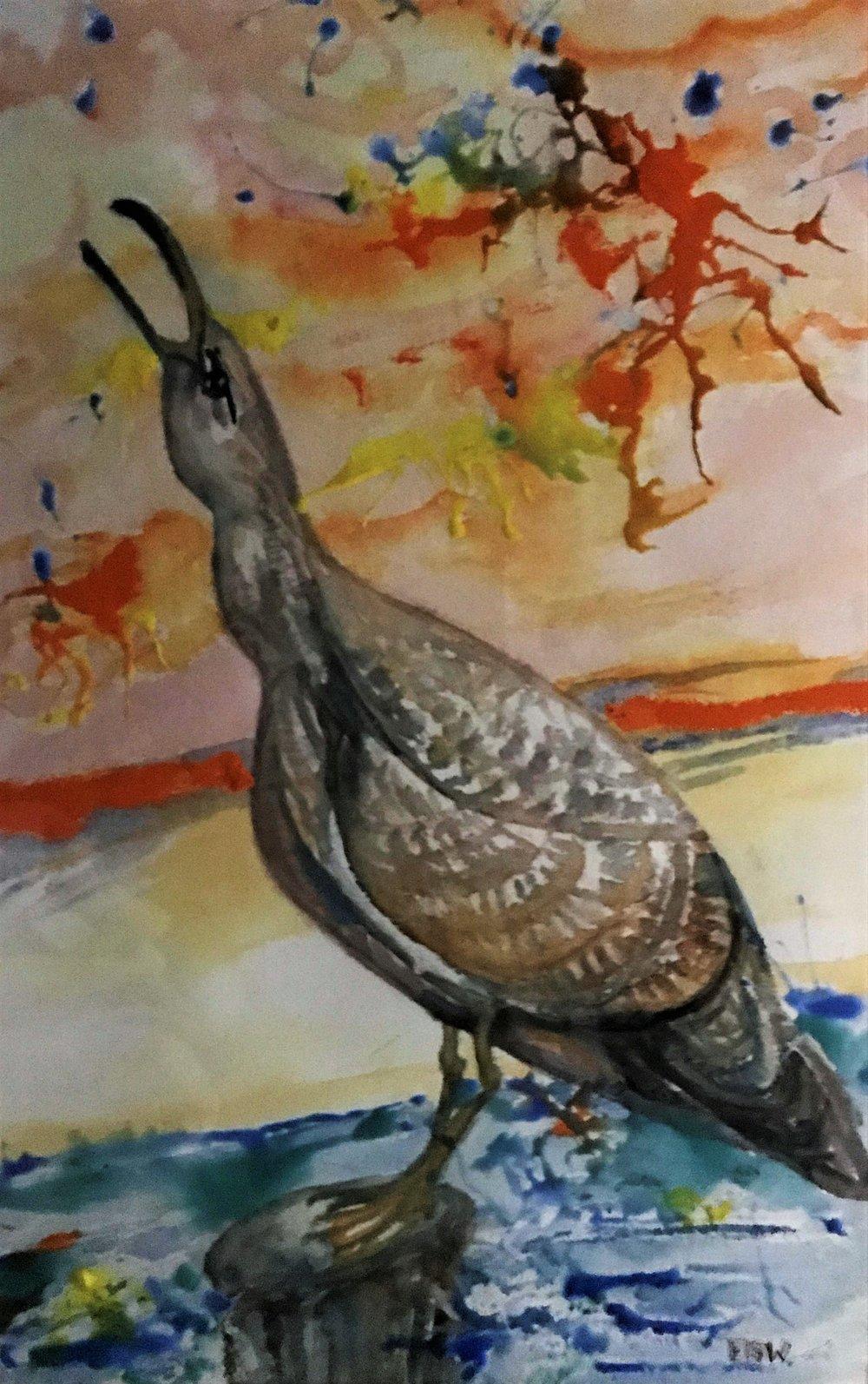 "Elizabeth B. Wright's ""Laughing Gull"""