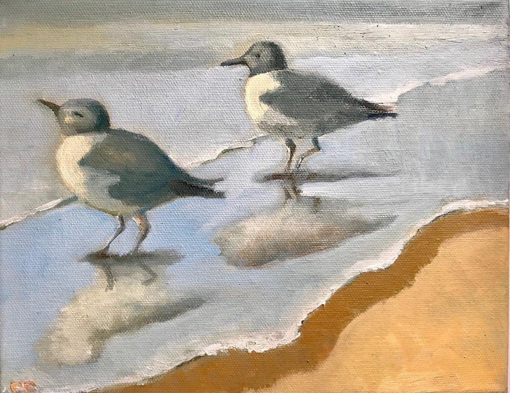 """Cathy Ciardiello's """"Little Shore Birds"""""""
