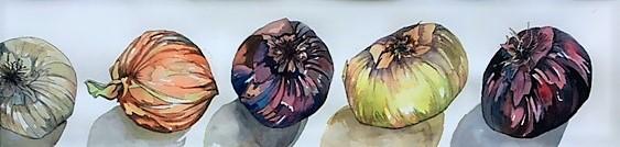 Five Onions