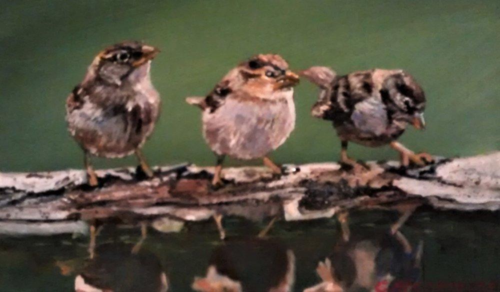 "Gigi Genovese's ""Three Sparrows"""