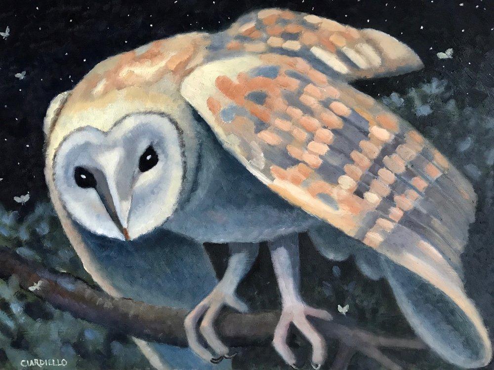 "Cathy Ciardiello's ""Barn Owl"""