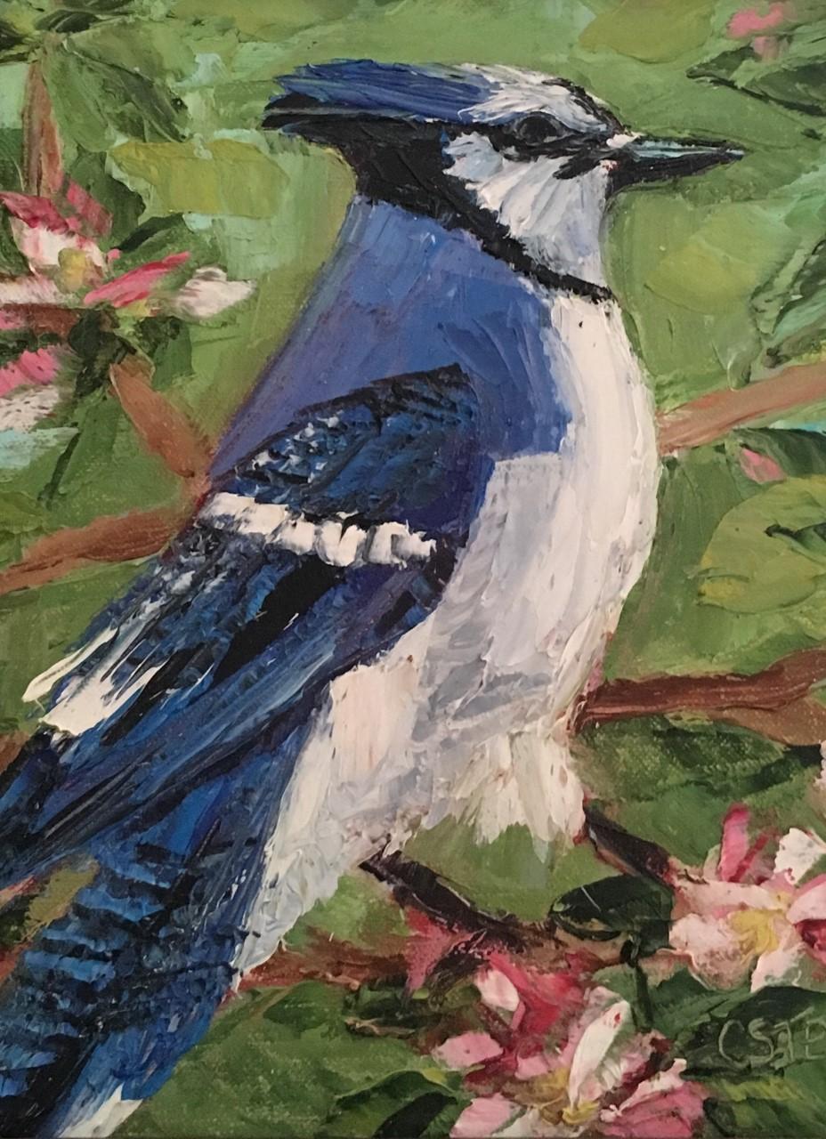 """Cindy Steven's """"Blue Jay"""""""