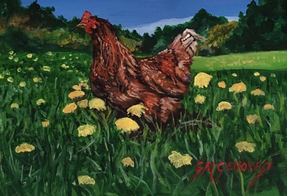 "Gigi Genovese's ""Spring Chicken"""
