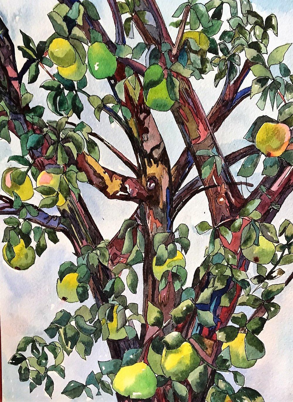 "Claudia Van Nes's ""Don't Sit Under the Apple Tree"""