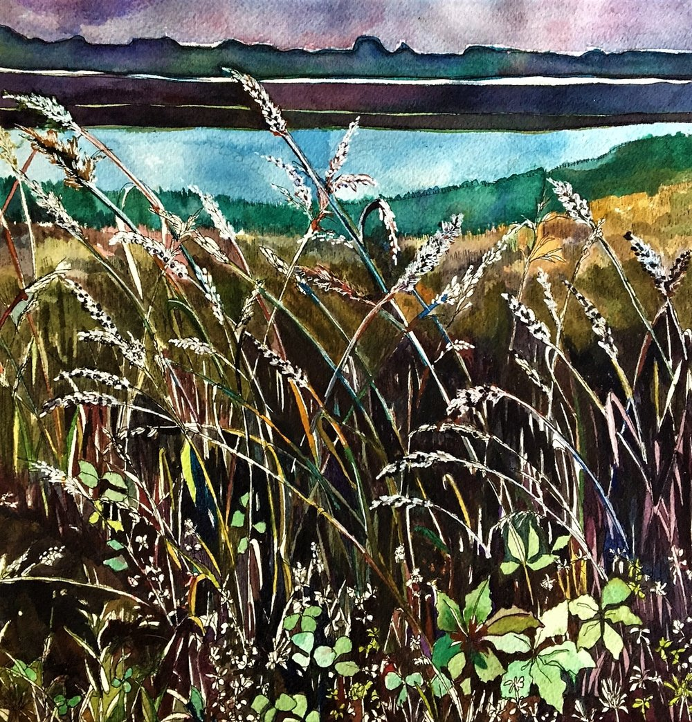 "Claudia Van Nes's ""Reeds by the Sound"""