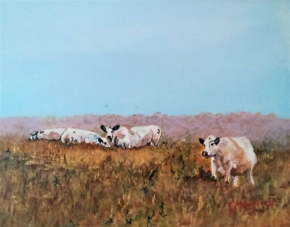 """Gigi Genovese's """"Cows in the Mist"""""""