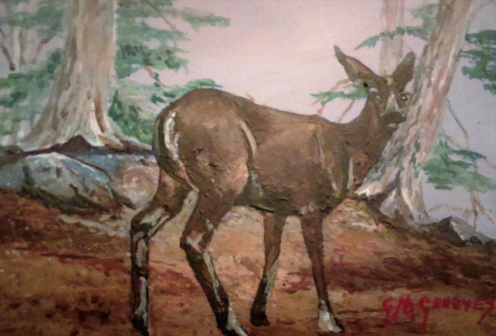 """Gigi Genovese's """"Deer in Clearing"""""""
