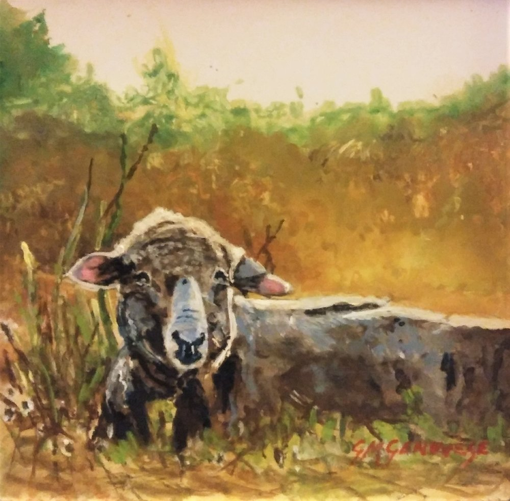 "Gigi Genovese's ""Sheep in the Meadow"""