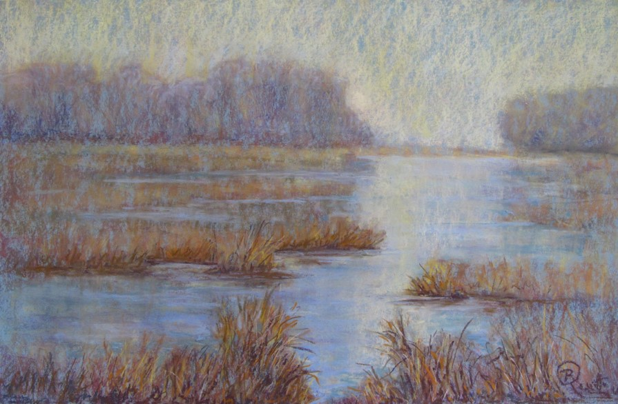 Colors of the Winter Marsh