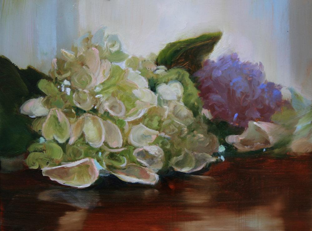 Hydrangea with Lilac