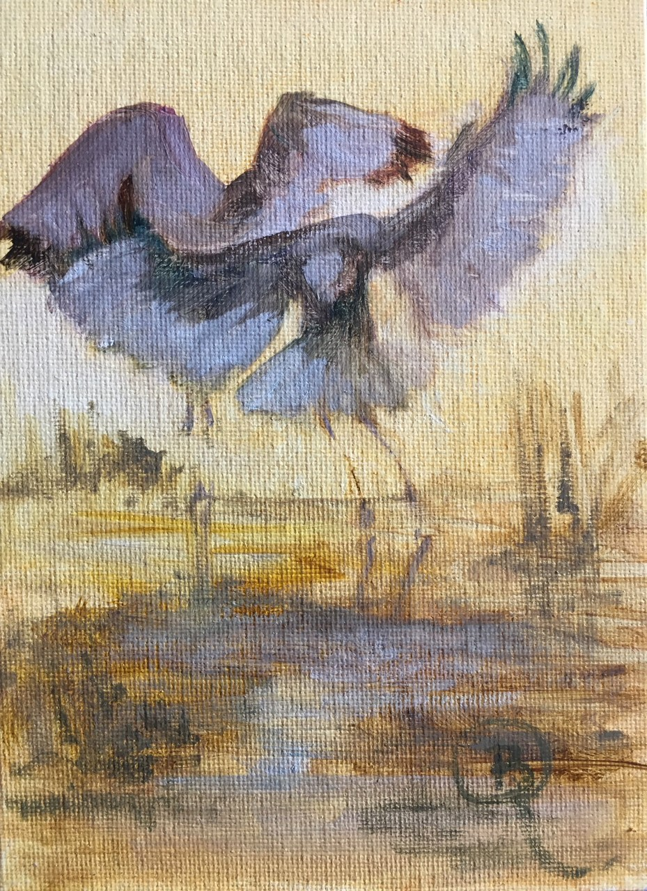 Ibis Morning at the Lake (Triptych