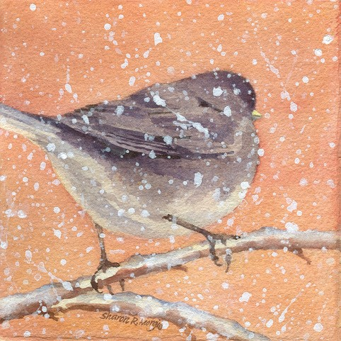 "Sharon Morgio's ""Junco with Flurries"""