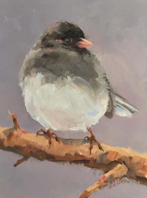 """Sharon Morgio's """"Snowbird"""""""