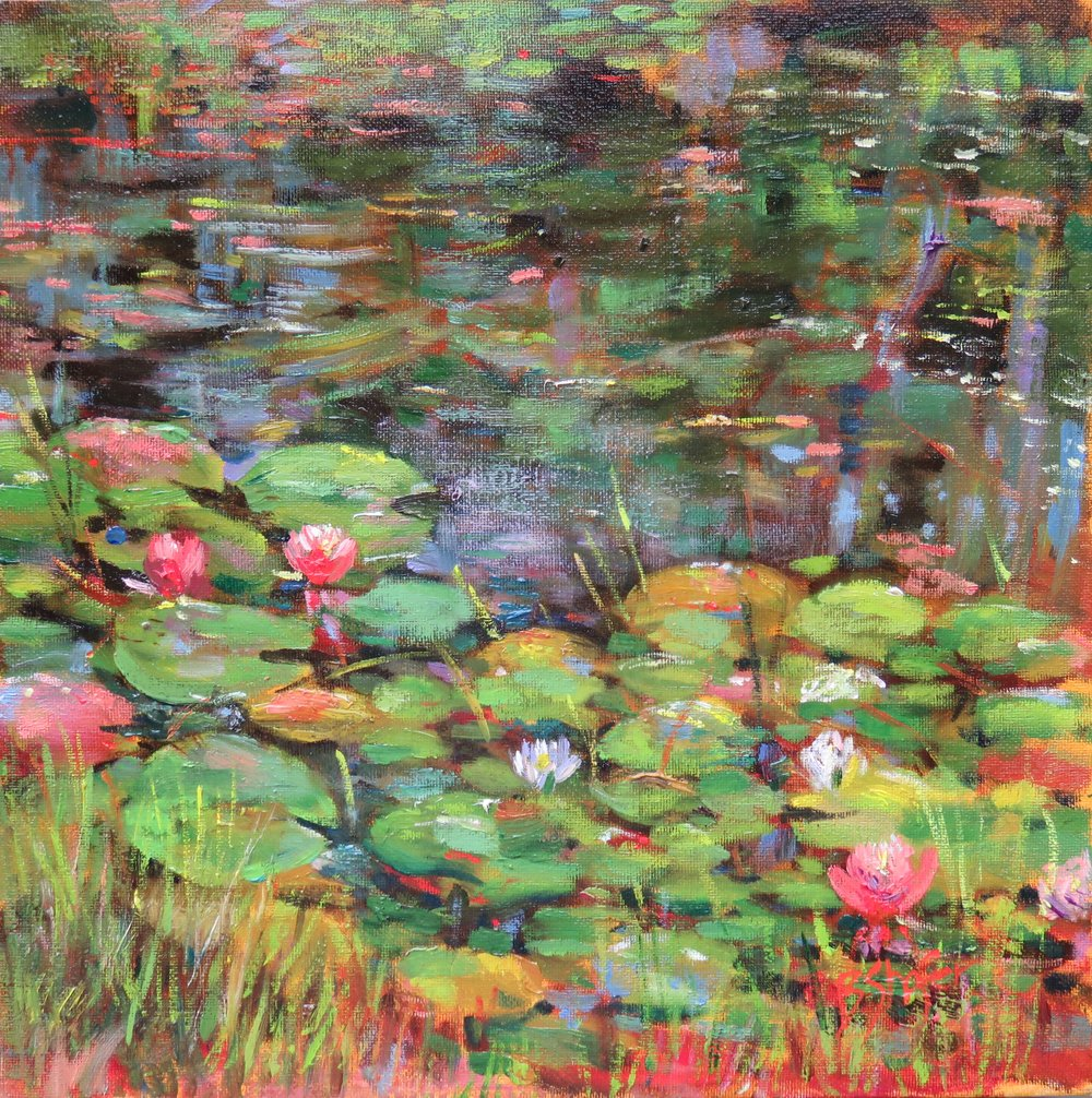 Lily Pond #1