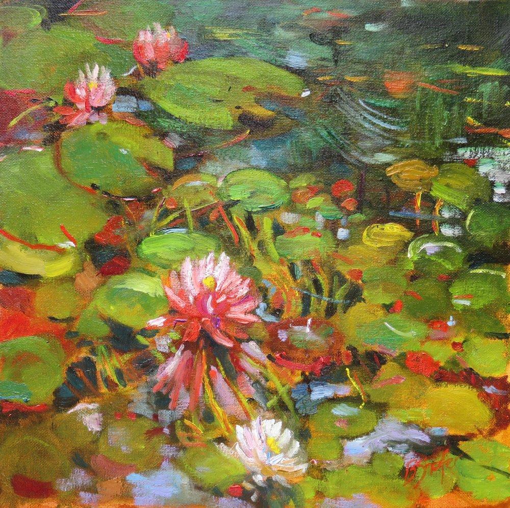 Lily Pond #3
