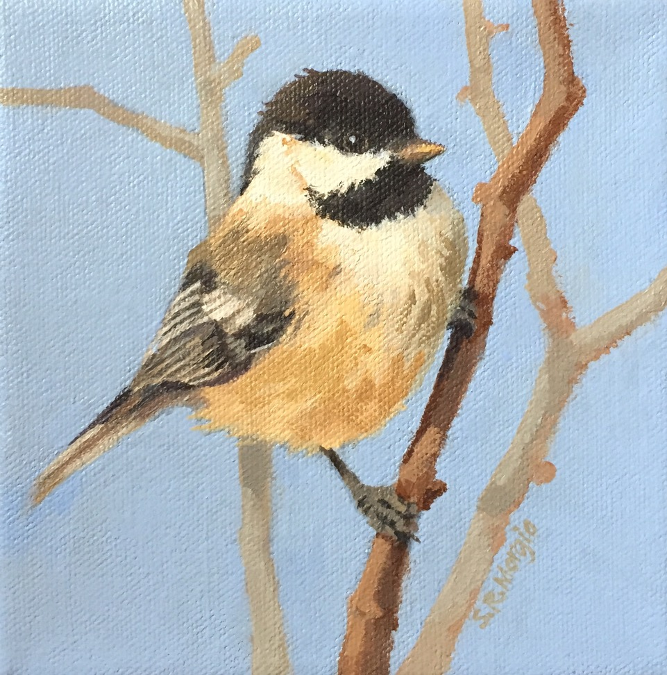 Little Chickadee