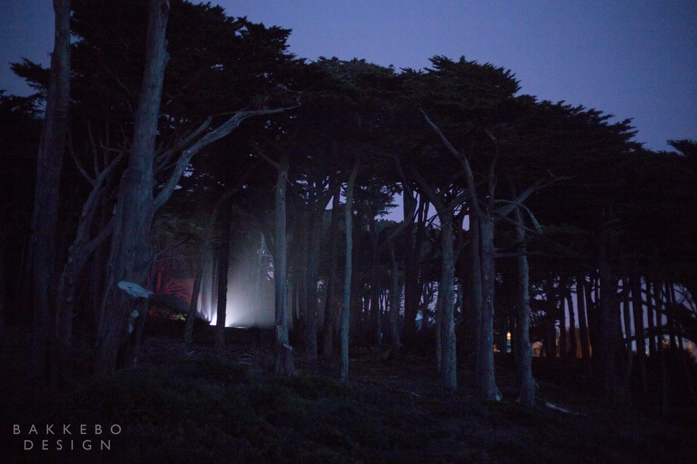San Francisco-2014-03-02-15.jpg