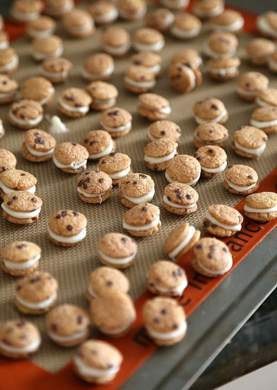 Sweet little chocolate chip maccaroons