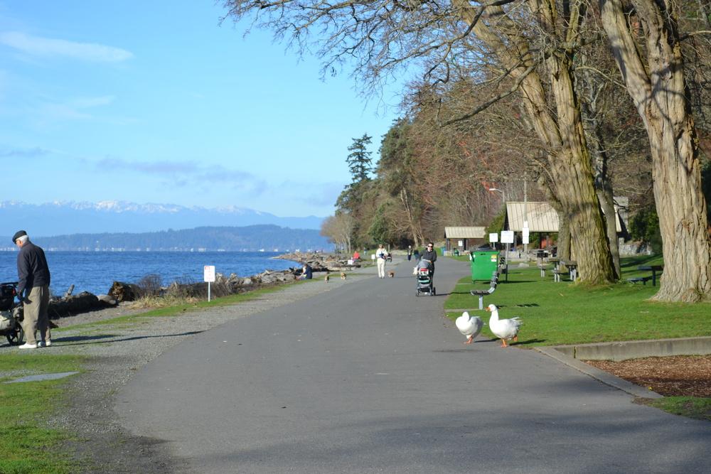 Lincoln Park beach side path