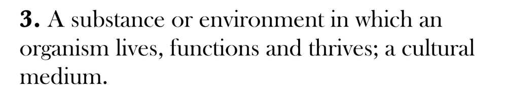 Medium Definitions Individual-3.jpg