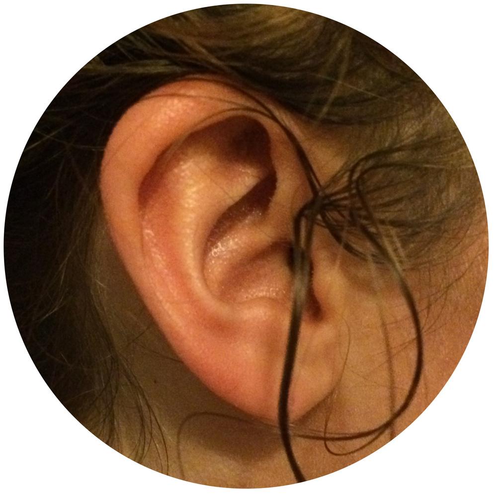 Leslie Ear.jpg