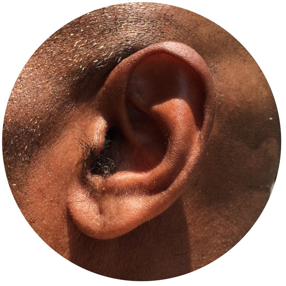 Jambi Ear.jpg