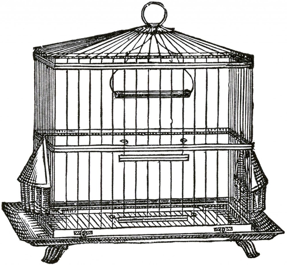 Vintage-Wire-Bird-Cage-Image-GraphicsFairy-1024x948.jpg