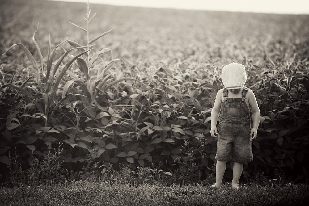 ideas-for-farm-photos