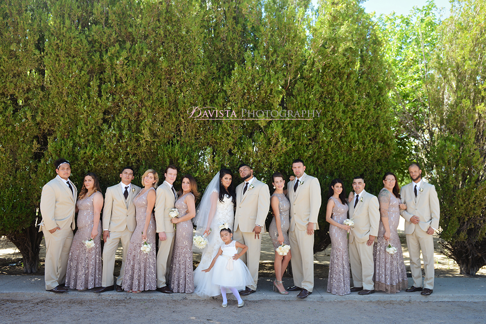 las-cruces-summer-new-mexico-wedding-party-poses