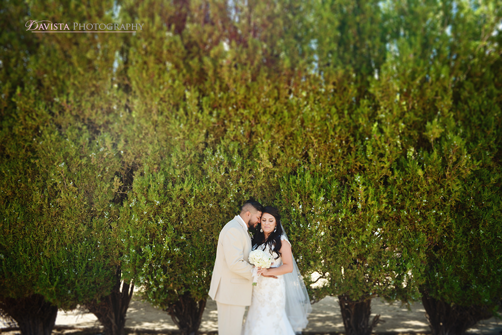 new-mexico-santa-fe-wedding-photographer