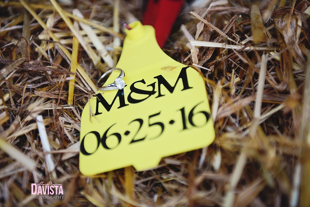 farm cow tag with save the date