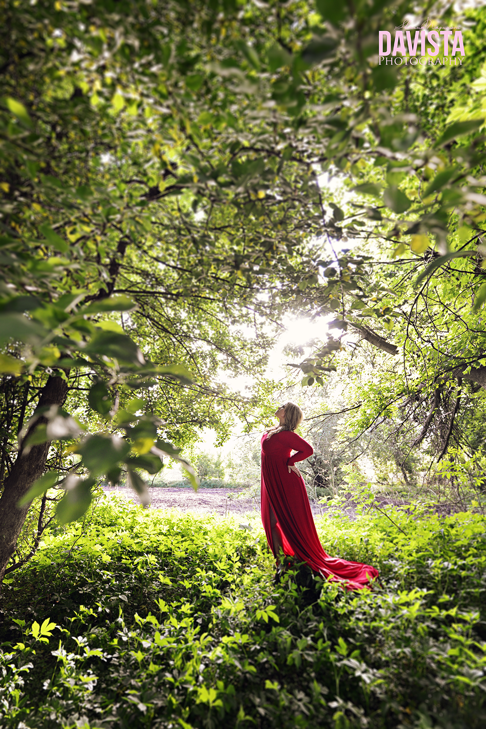 gorgeous red dress and woman portraits