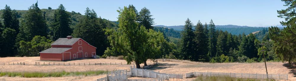 Farm - La Honda, CA