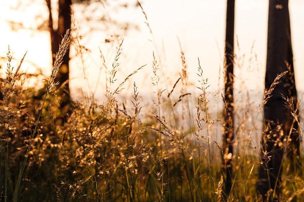 Slovensky_svadobny_fotograf_Peter_Rigo_Photography_Vysoke_Tatry__10_web.jpg