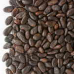 cacao-300x254-150x150.png