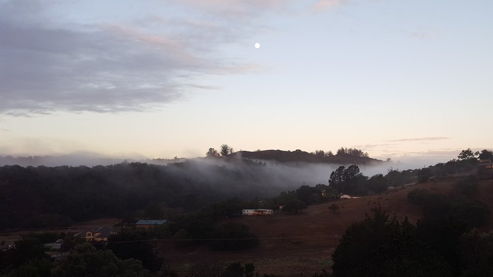 foggy canyon.jpg
