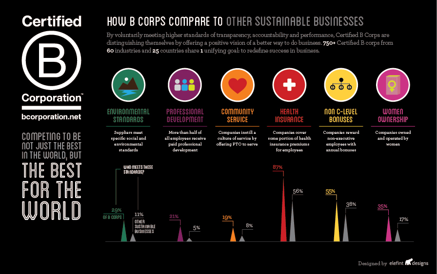 bcorp_infographic_web_large.jpg