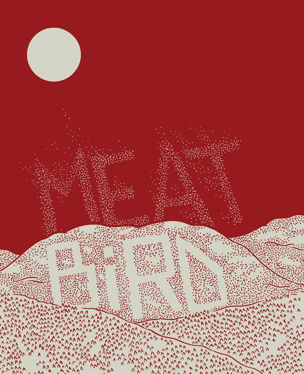 sundaysfive: Sundays 5 will be at TCAF Table 102. Also there will be Alex Kim, one of the Sundays editors, who is debuting this awesome looking comic Meat Bird