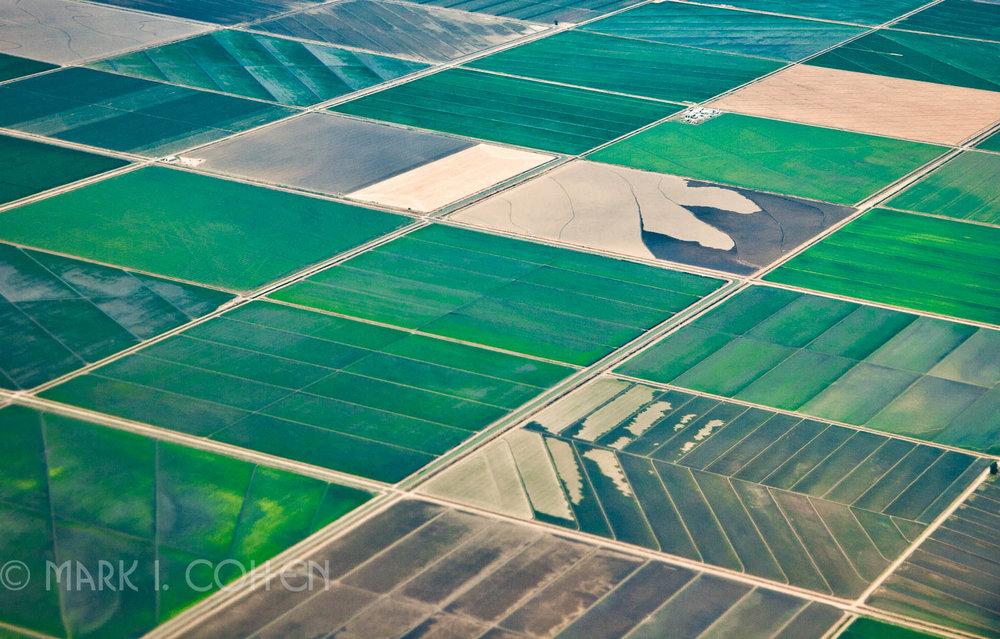 Field alignment 9, California 2008