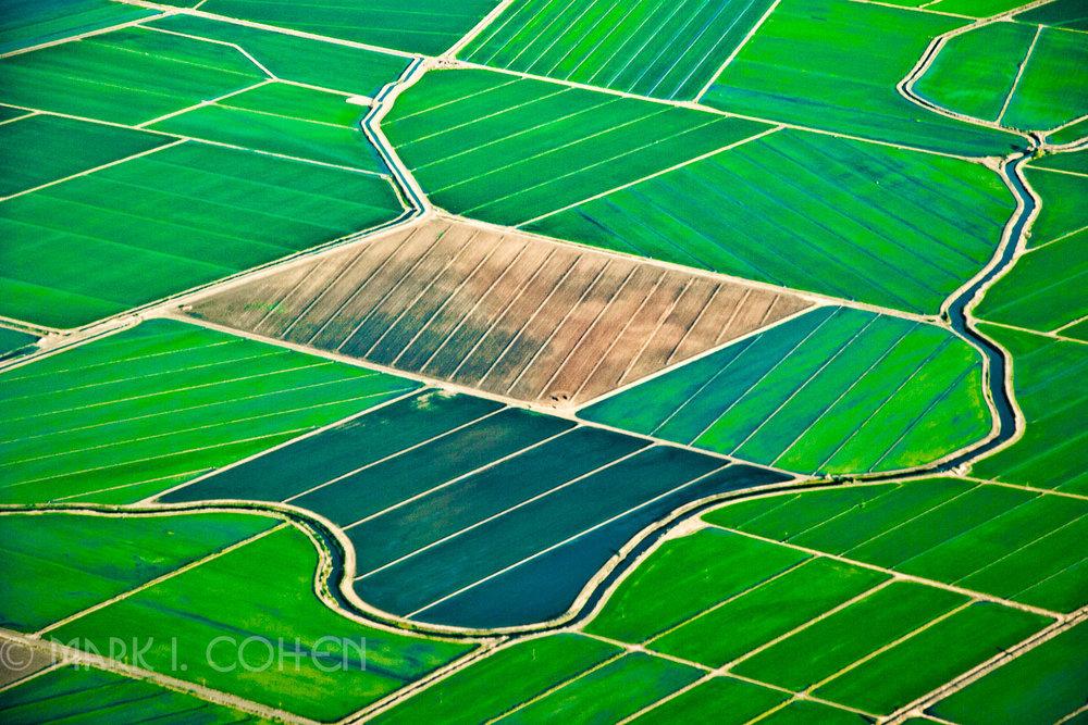 Field alignment 69, California 2004