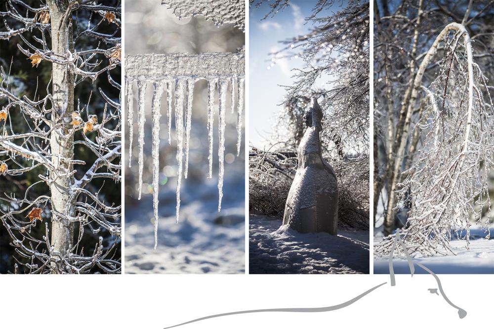IceStorm_Web.jpg