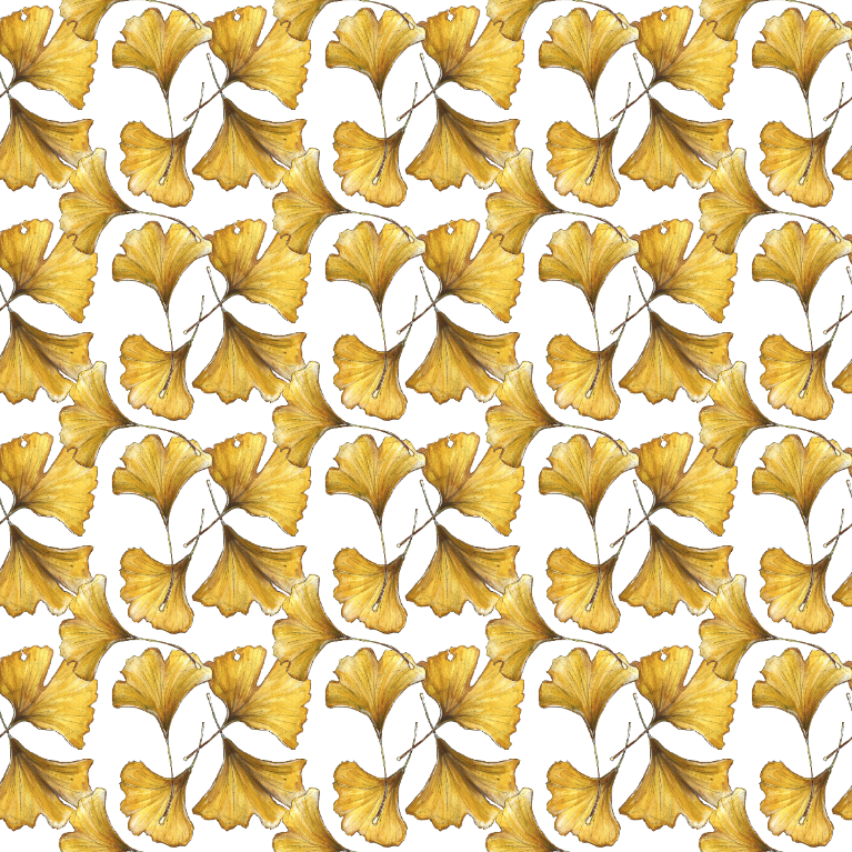 Ginkgo Pattern with white background